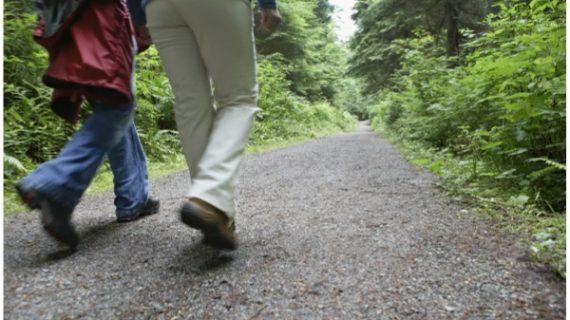 xekios 8 choses qui se produisent dans votre corps si vous marchez tous les jours lifestyle Non classé Sports  sport santé marche