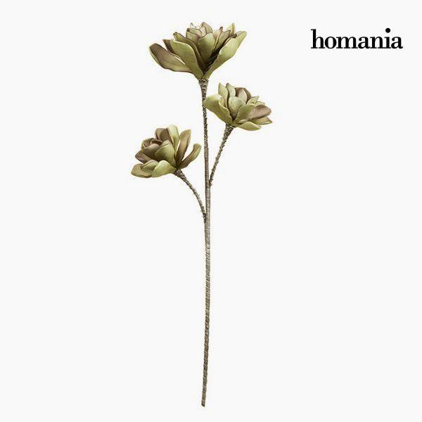 xekios Fleur Mousse Violet Vert by Homania