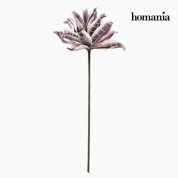 xekios Fleur Mousse Pourpre by Homania