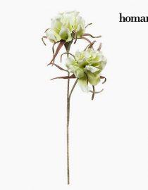 xekios Fleur Mousse Blanche by Homania