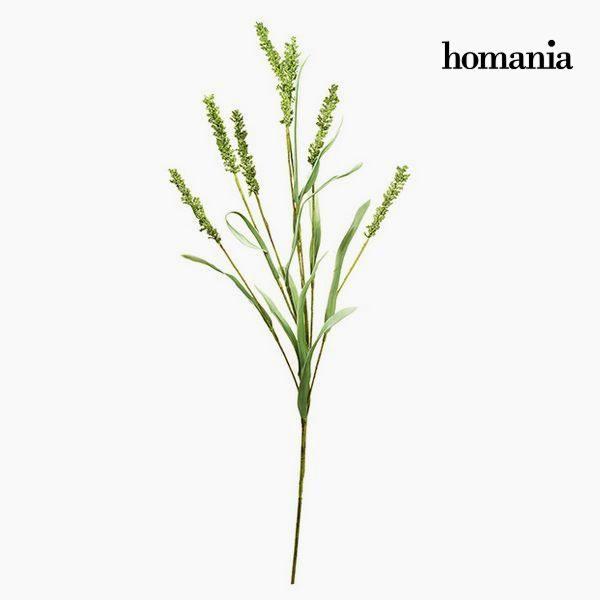 xekios Fleur Mousse Vert by Homania