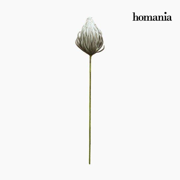 xekios Figurine Décorative Fleur Mousse Gris (87 cm) by Homania