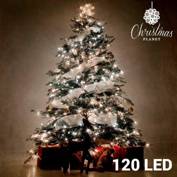 xekios Lumières Blanches de Noël (120 LED)