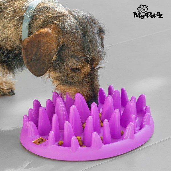 xekios Mangeoire Interactive pour Animaux de Compagnie Slow Food Bowl My Pet Ez