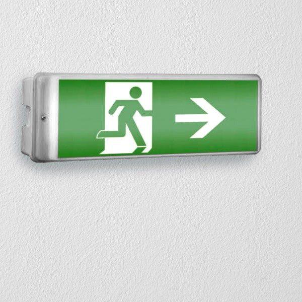 xekios Éclairage d'Urgence avec Signalisation Smartwares NV52